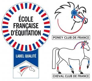 ecole-francaise-equitation-ecuries-des-perrelles-la-vacquerie