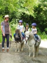 poneys-enfants-ecuries-des-perrelles-la-vacquerie
